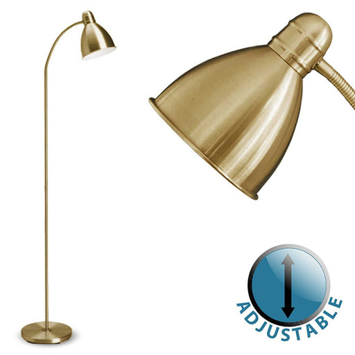 Flexi Neck Floor Lamp Antique Brassed