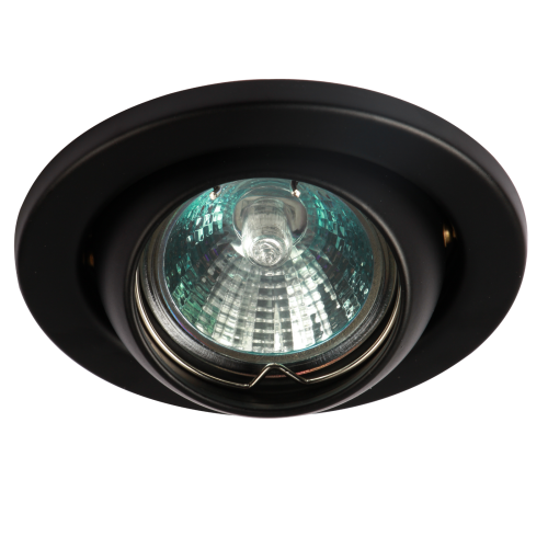 IP20 12V 50W max. L/V Black Eyeball Downlight with Bridge