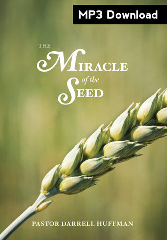The Miracle of the Seed MP3