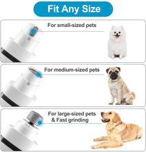Load image into Gallery viewer, 3 IN 1 Pet Grooming Machine Rechargeable Dog Cat