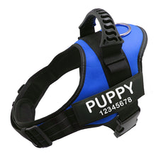 Load image into Gallery viewer, Personalized No Pull Dog Harness