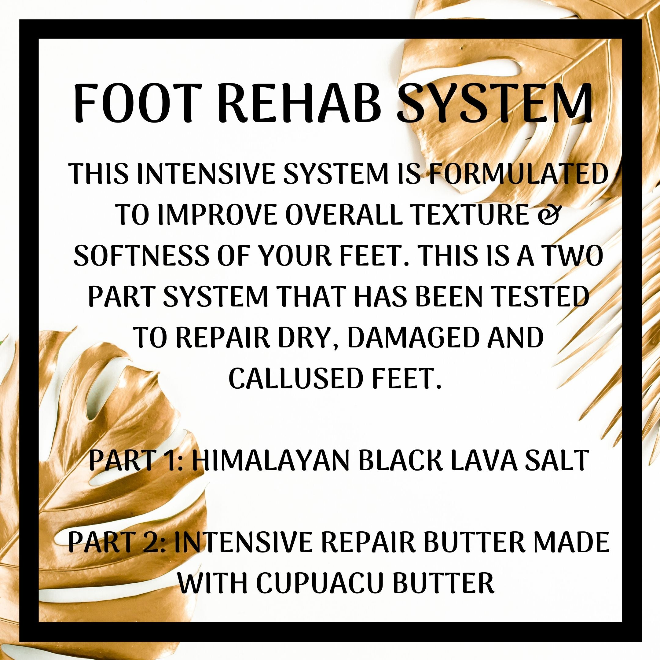Foot Rehab System