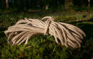 Rope in the woods