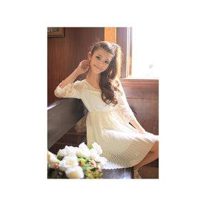 SD78343 - Korea Stylish Chiffon Dress