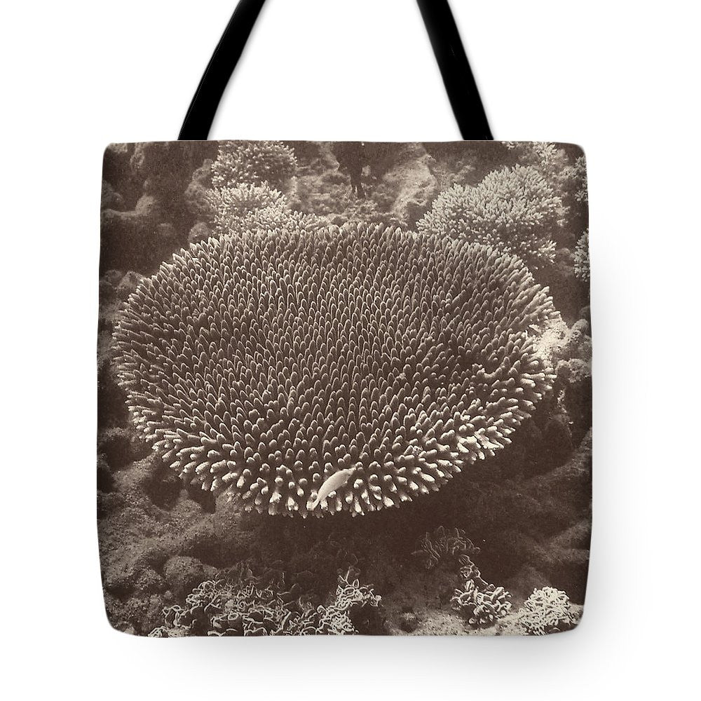 Sepia Barrier Reef Coral II Tote Bag