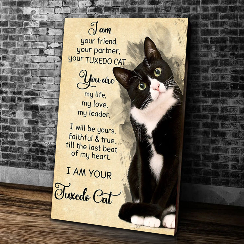 I Am Your Friend, Your Partner, Your Tuxedo Cat Matte Canvas - ATMTEE