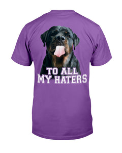 To All My Haters T-Shirt - ATMTEE