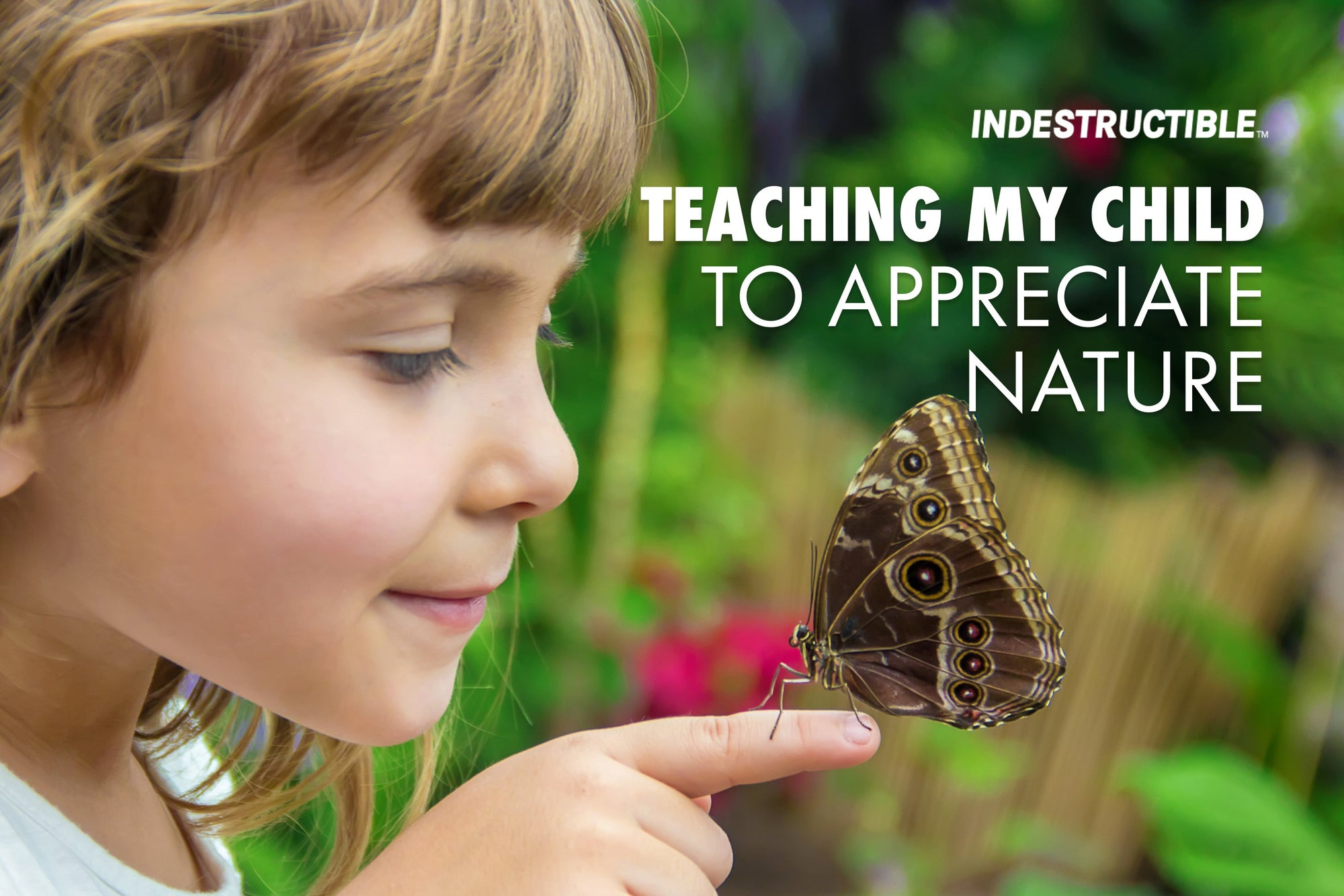 How I Taught My Daughter to Appreciate Nature