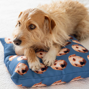 Custom Pet Pillow Cover - Twill