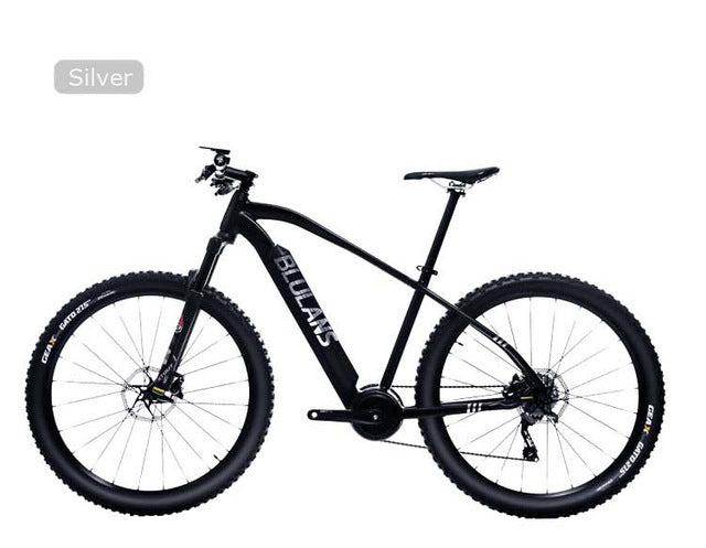 BLULAN Modelx5 Electric Mountain Bike | 36V Battery | 250w Motor