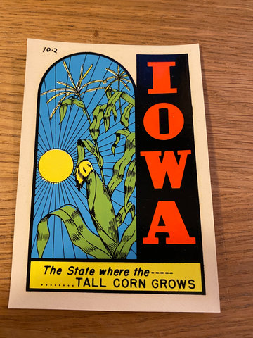 Vintage American waterslide  travel sticker - IOWA
