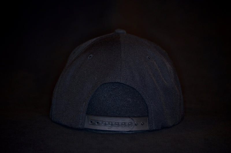 products/After_Party_Snapback_Back.jpg