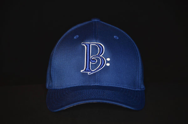Blue and White on Royal Blue Fitted