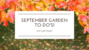 Summerland's September Garden To-Do's!
