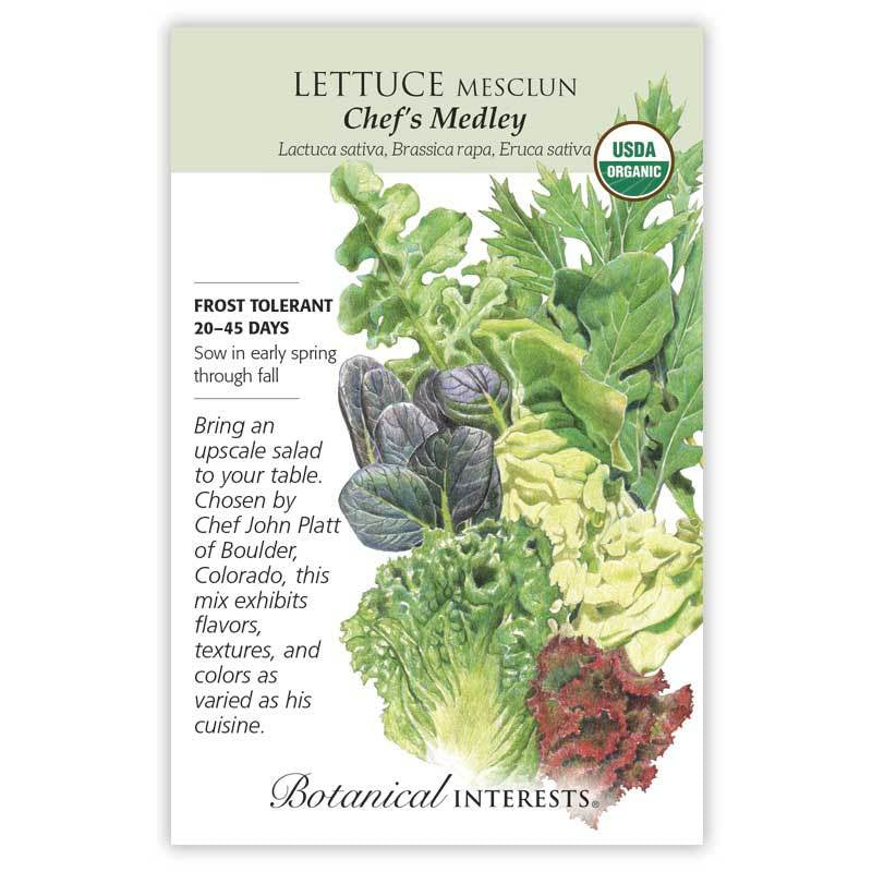 Lettuce Chef's Medley Seeds Organic
