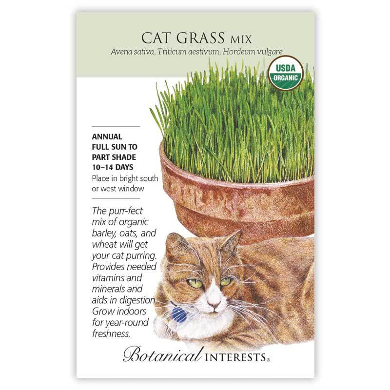 Cat Grass Mix Seed Organic - Large