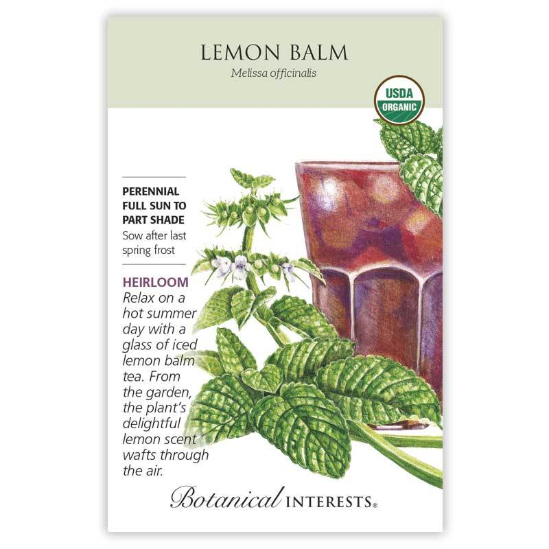 Lemon Balm Seeds Organic
