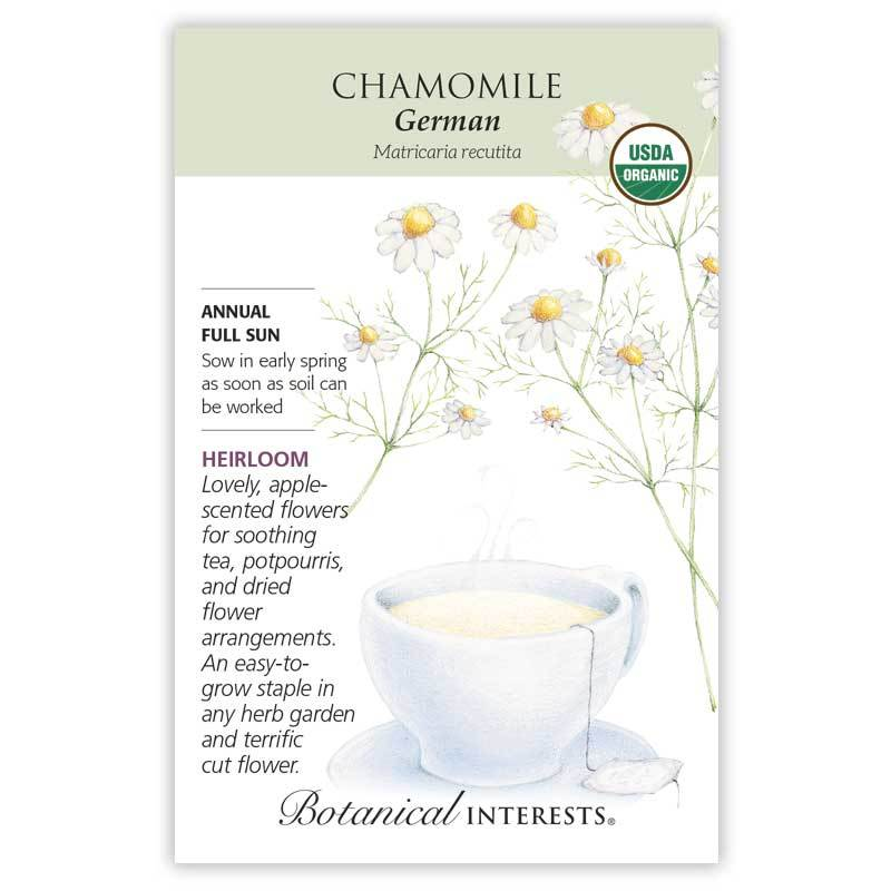 Chamomile German Seeds Organic