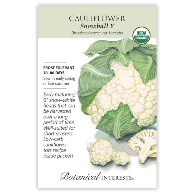 Cauliflower Snowball Seeds Organic