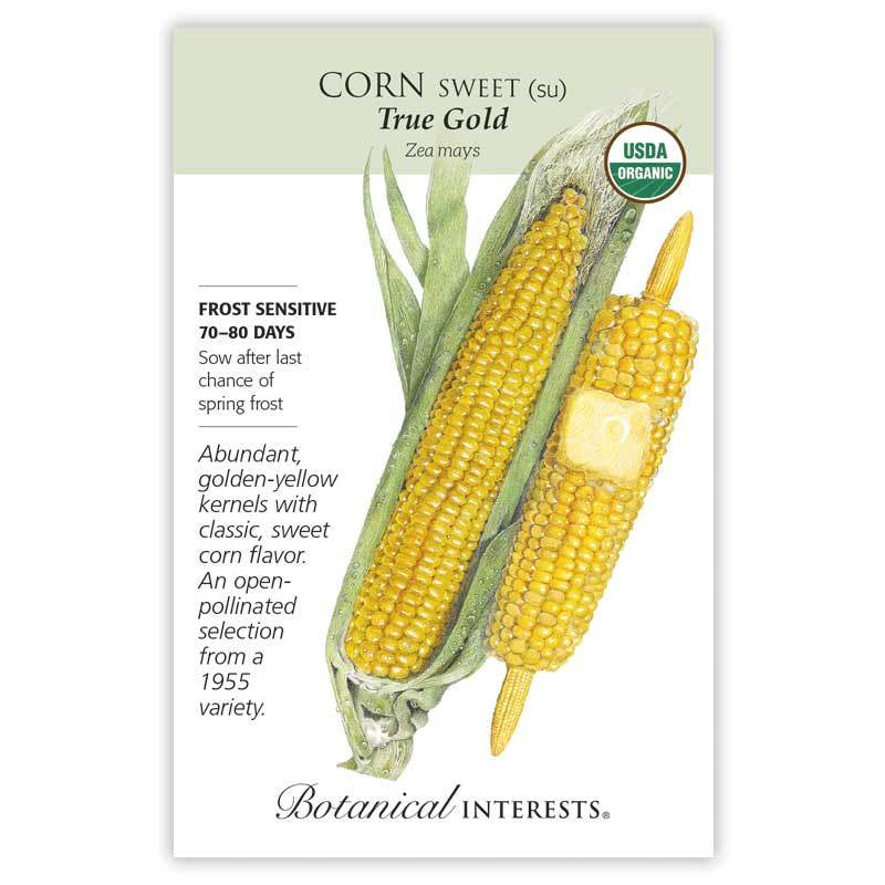 Corn Sweet True Gold Seeds Organic