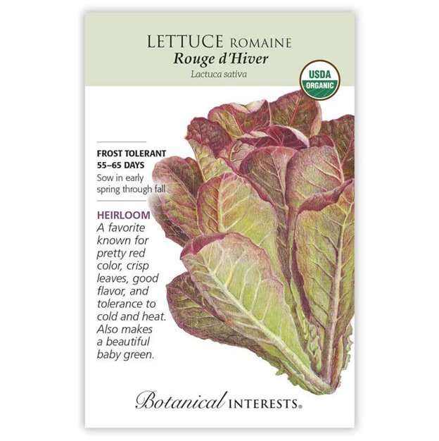 Lettuce Rouge d'Hiver Seeds Organic