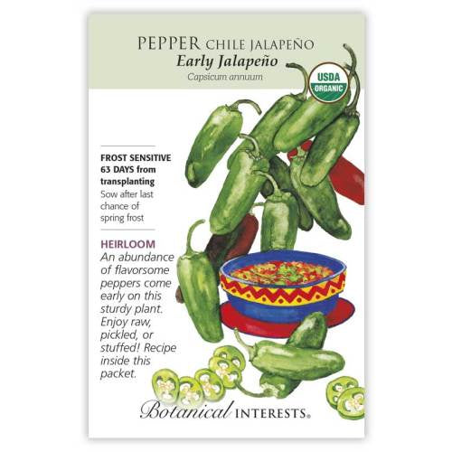 Pepper Early Jalapeno Seeds Organic
