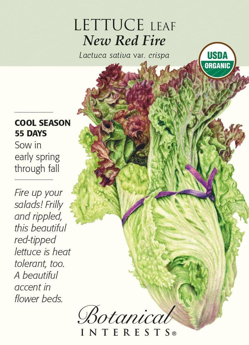Lettuce New Red Fire Seeds Organic