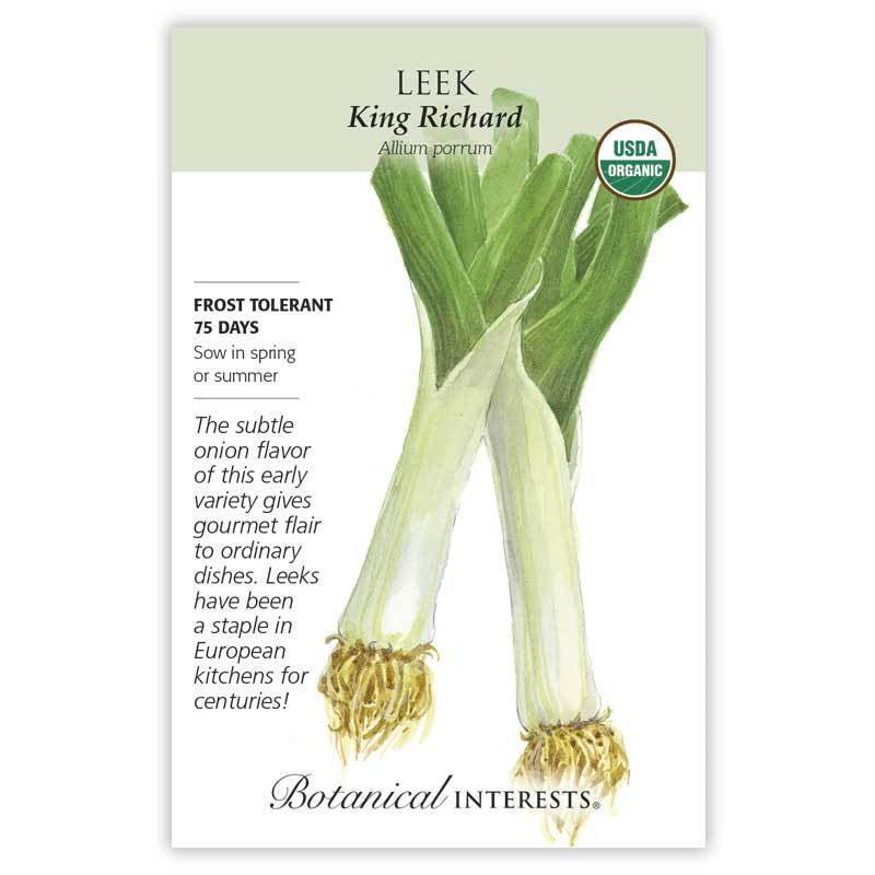 Leek King Richard Seeds Organic