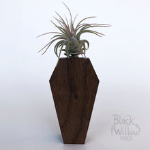 Load image into Gallery viewer, Black Walnut Coffin Planter