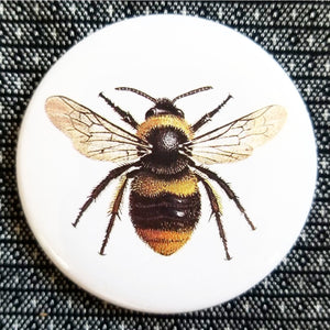Bumble Bee button badge pin