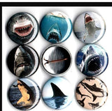 Shark sharks buttons badge pins set of 8