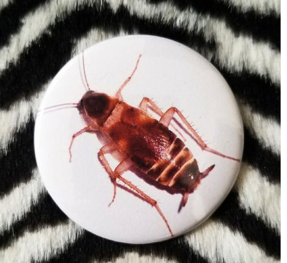 2.25 inch Cockroach button badge pin