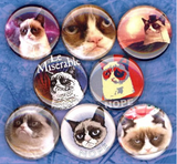 1 inch set of 8 Grumpy cat buttons badge pins