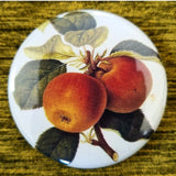 Apple Tree button badge pin
