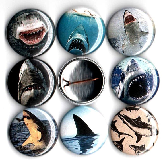 1 inch set of 8 Shark buttons badges pins