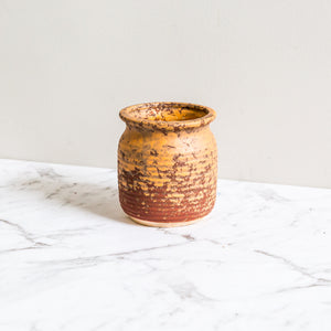 orange earthen plant pot for succulents and indoor plants