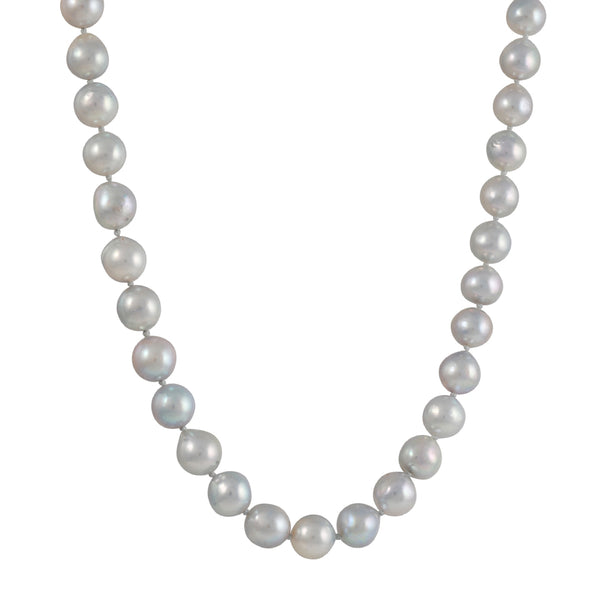 CP Collection - Akoya Pearls Necklace