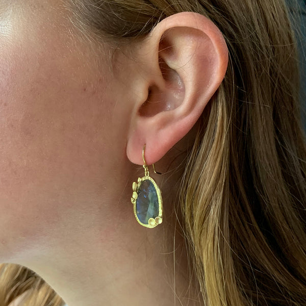 Sarah Richardson - Pod Halo Drop Earrings With Labradorite