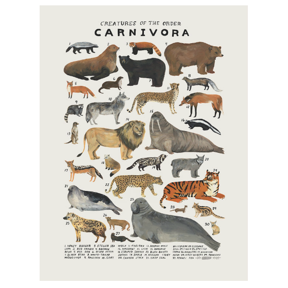 Kelzuki Creatures of the Order Carnivora Print