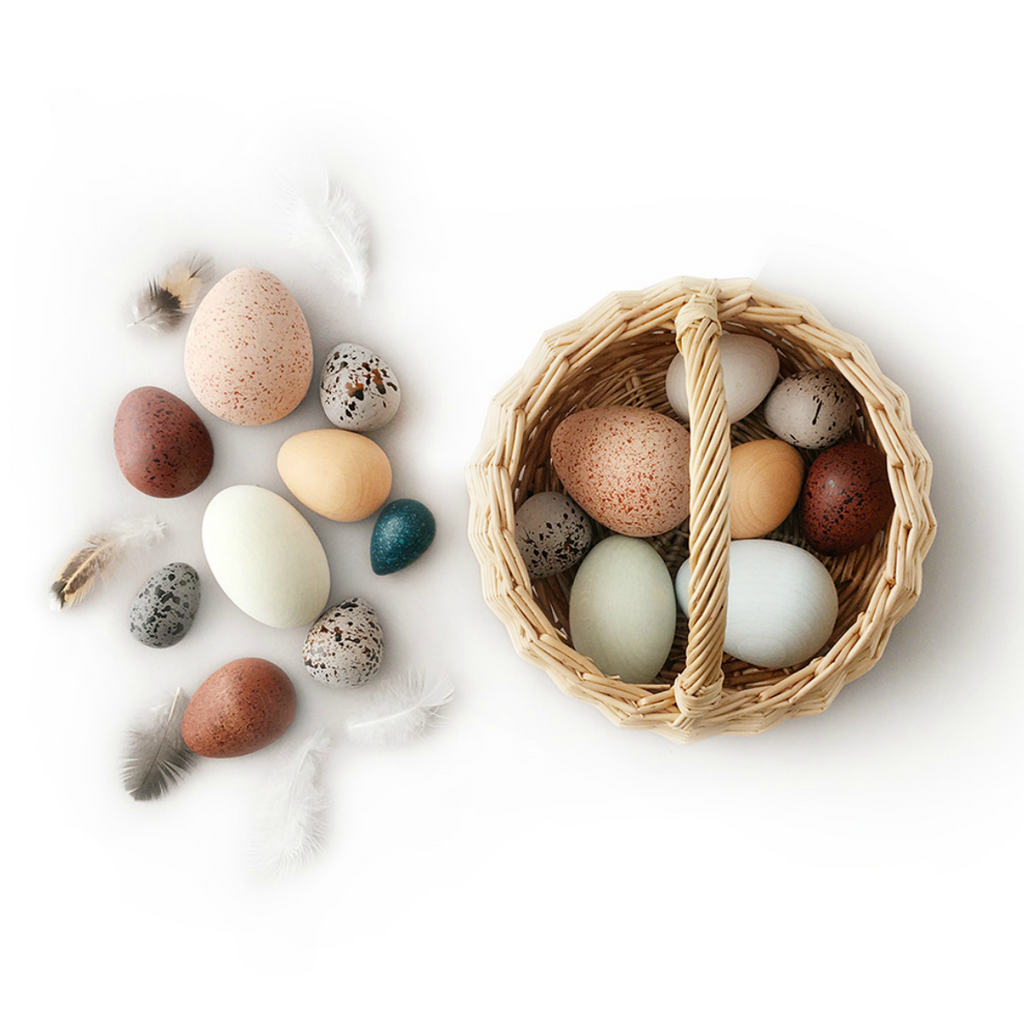 A Dozen Bird Eggs Set