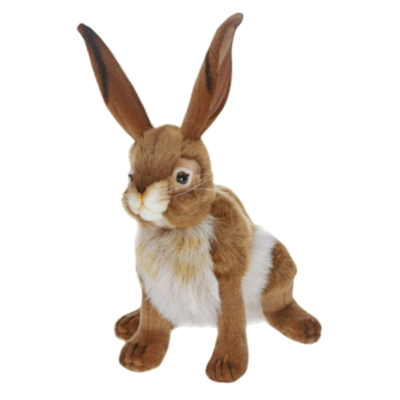 Hansa Rabbit