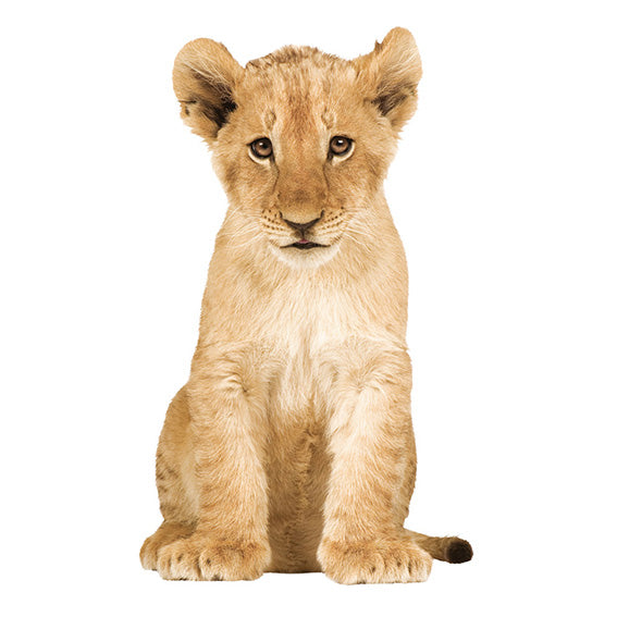 Lion Cub Wall Sticker