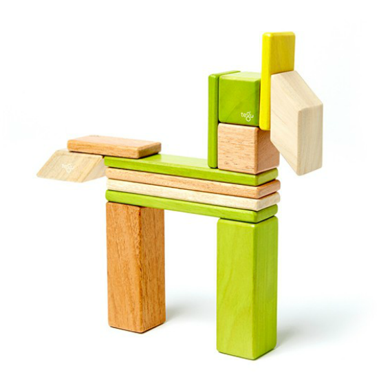 Tegu Jungle Magnetic 14 Piece Block Set
