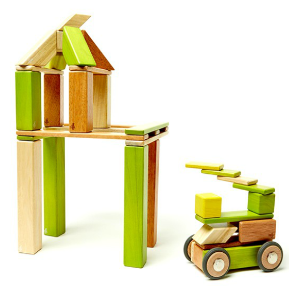 Tegu Jungle Magnetic 42 Piece Block Set
