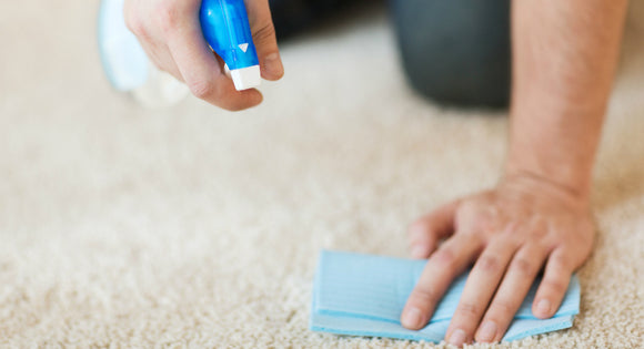 How to handle summer carpet stains - REMI Network
