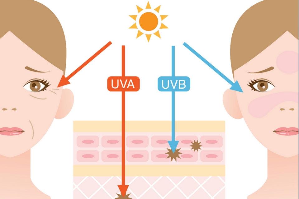 UVA and UVB – What's the Difference?