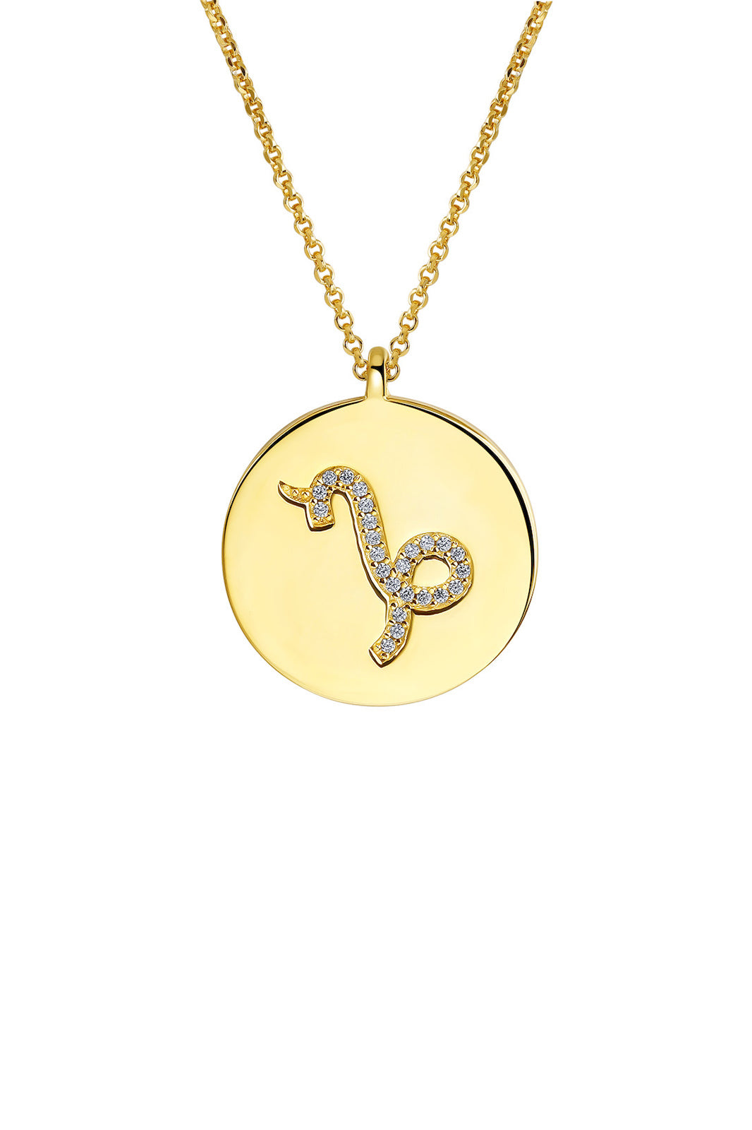 Gold Plated Silver Zodiac Necklace - Capricorn Side View