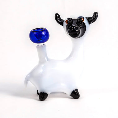 White Sheep Rig