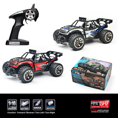 1/16 2WD High Speed Remote Control Electric RC Car Off Road Desert Buggy Vehicle