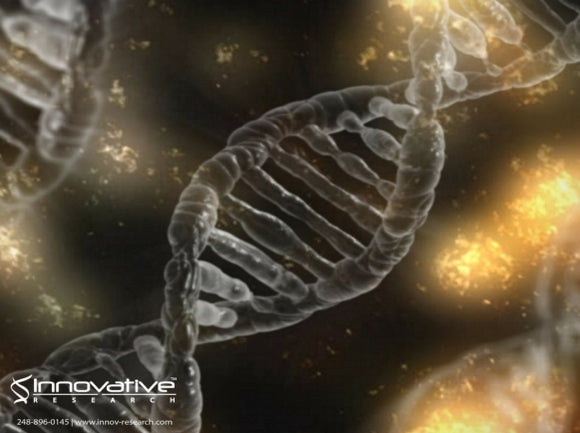 DNA Transcription: New Research Offers New Insight